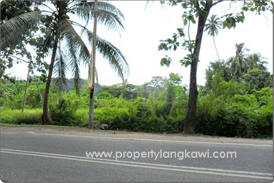 langkawi freehold land for sale